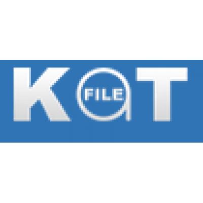 katfile.com 1天高级会员